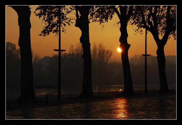 Les quais de la Loire à Orléans