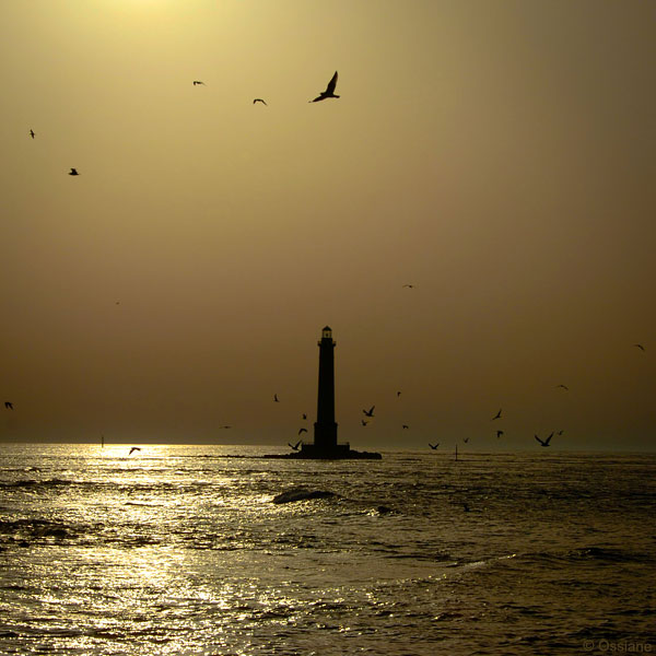 Appel de Phare / Flash of Light