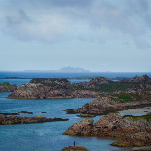 Île Flottante / Floating Island