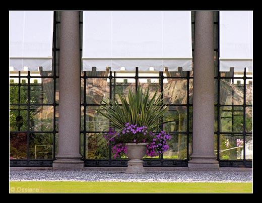 Jardin de Côme