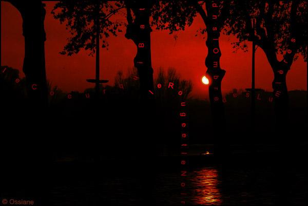 Le coeur qui bat dans l'ombre des lumières, le rouge et le noir