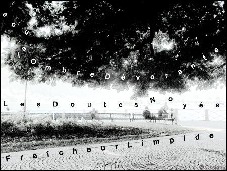 Fraîcheur limpide sous l'ombre dévorante, les doutes noyés