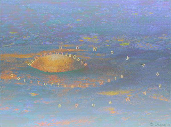 Un noyau d'amande, un mamelon de dune ou la tortue des mers