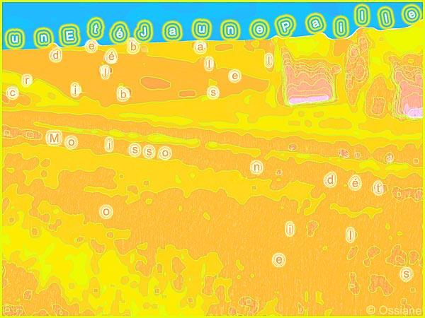 Criblé de balles, un été jaune paille, moisson d'étoiles
