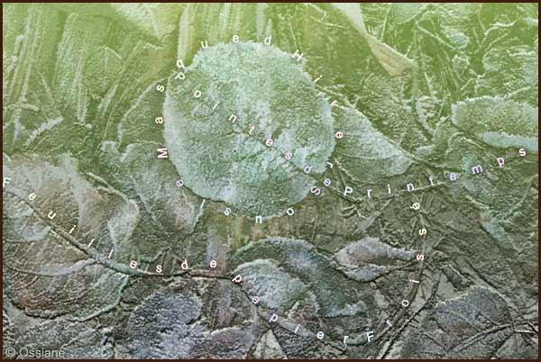 Feuilles de papier froissé, sous le masque d'hiver, pointes de printemps