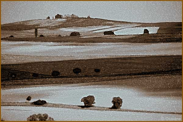 Ombres planantes sur rêve de Toscane en terre de Sienne