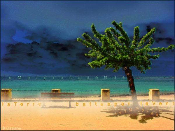La mer presque nue, la terre battue par le vent, dansent les ombres