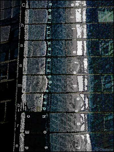 Ligne de faille dans les fibres de l'intime, chambre d'échos