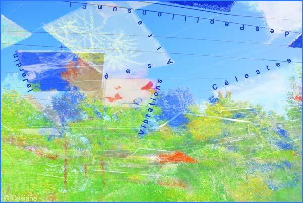 le jardin des airs, des papillons sur un fil, vibrations célestes