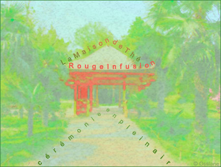 La maison de thé, cérémonie en plein air en rouge infusion