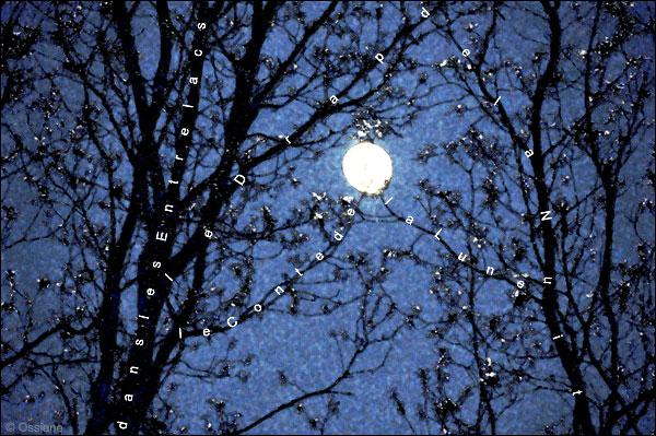 le drap de la nuit, le conte de la lune dans les entrelacs