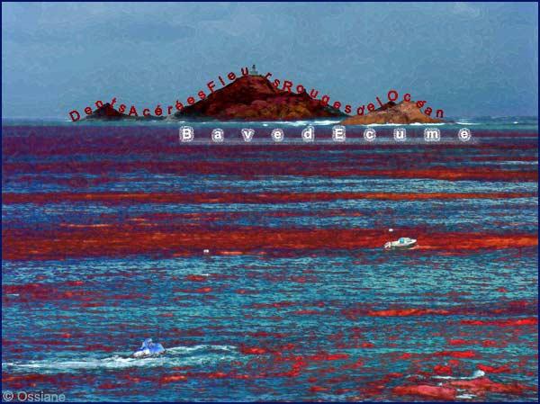 Les dents acérées, fleurs rouges de l'océan, bave d'écume