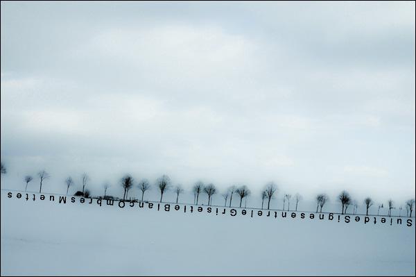 suite de signes, entre le gris et le blanc, ombres muettes